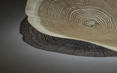 Lamelle de bois comme une dentelle, par Pascal Oudet